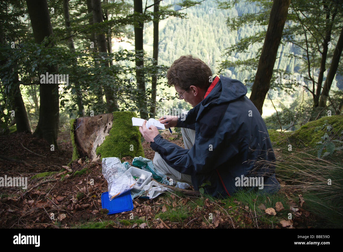Geocacher lifting a cache, near Oberried in the Black Forest, Germany, Europe - Stock Image