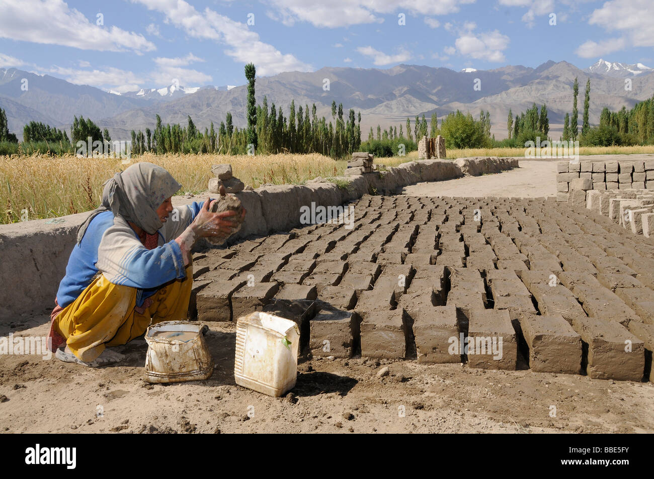 Brickworks, Ladakhi woman kneading clay bricks, Leh, Ladakh, North India, Himalaya - Stock Image