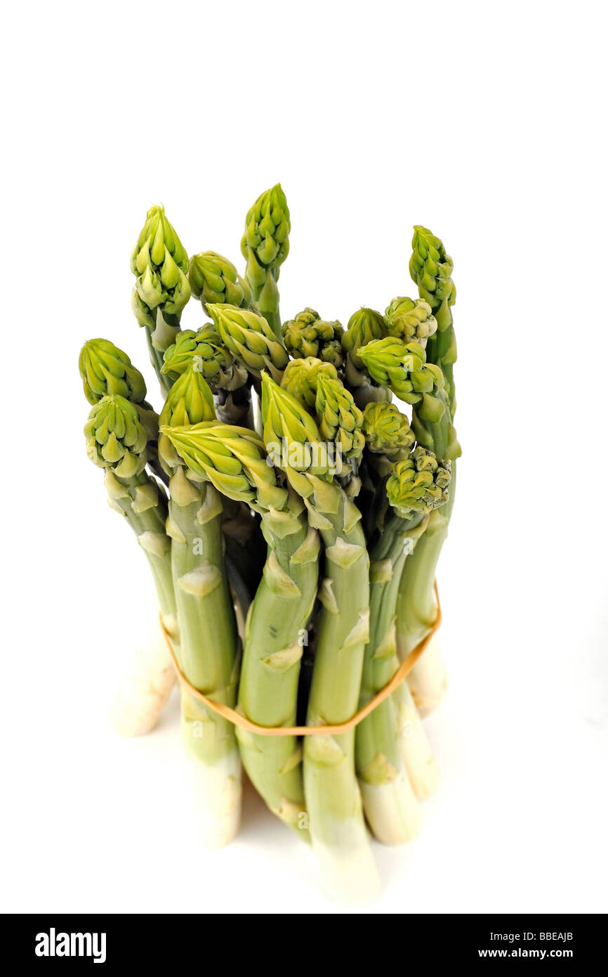 Green asparagus (Aspagurus) Stock Photo