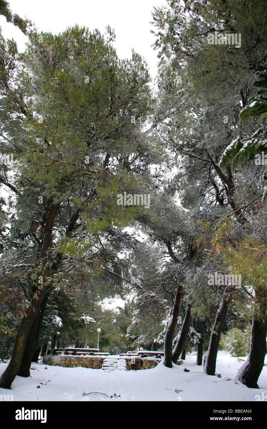 Judea snow in Gush Etzion - Stock Image