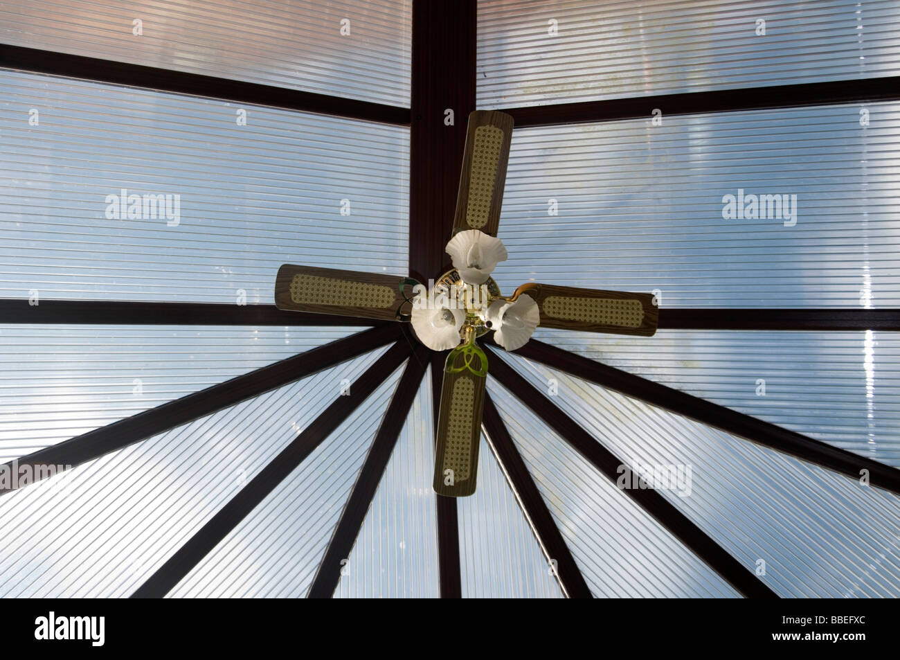 Ceiling Fan Fans Cooling Hot Cold Weather Keeping Cool Down Summer Scorcher Scorching Conservatory Conservatories