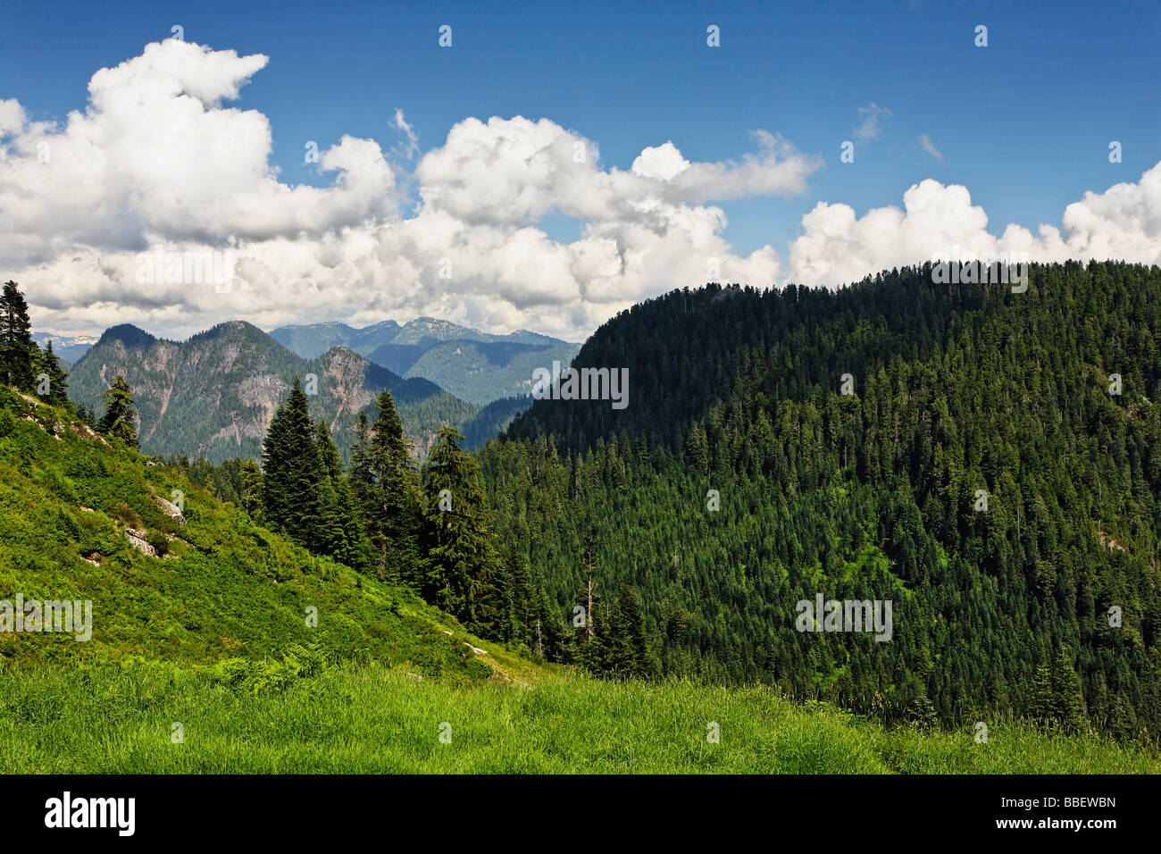 Surrounding mountain landscapes are stunning around Grouse Mountain, Vancouver British Columbia Canada - Stock Image