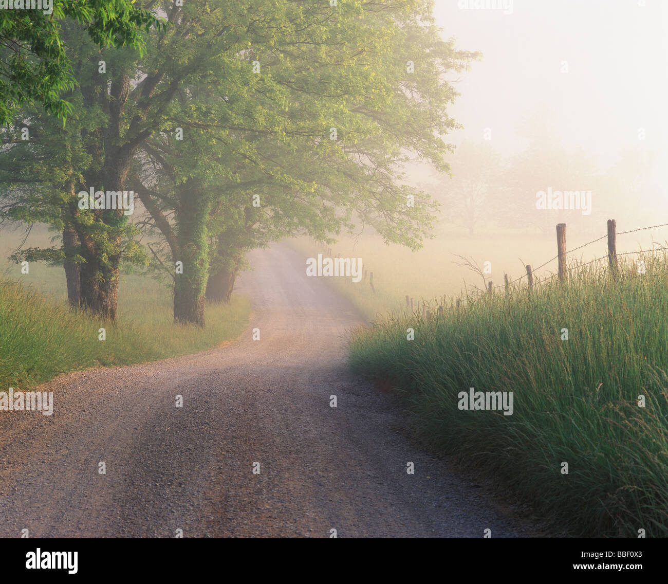Early morning fog lifting off old Hyatt Lane in Cades Cove Great Smoky Mountains National Park Tennessee Stock Photo