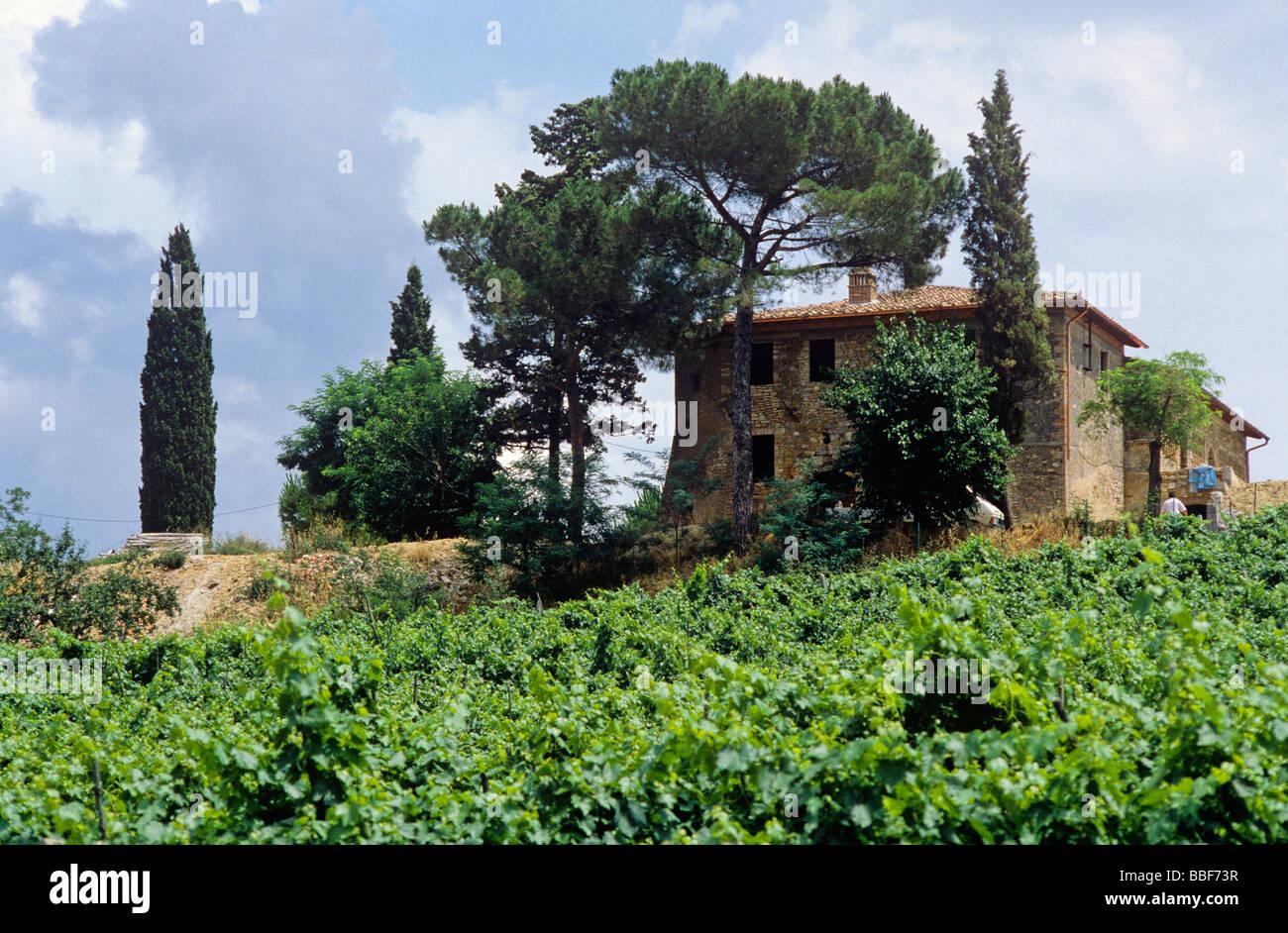 farmstead and winery region of tuskany italy - Stock Image