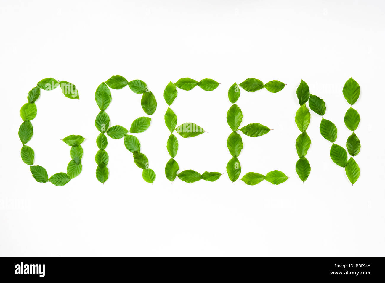 Word 'green' spelt out with leaves. Beech leaves. - Stock Image