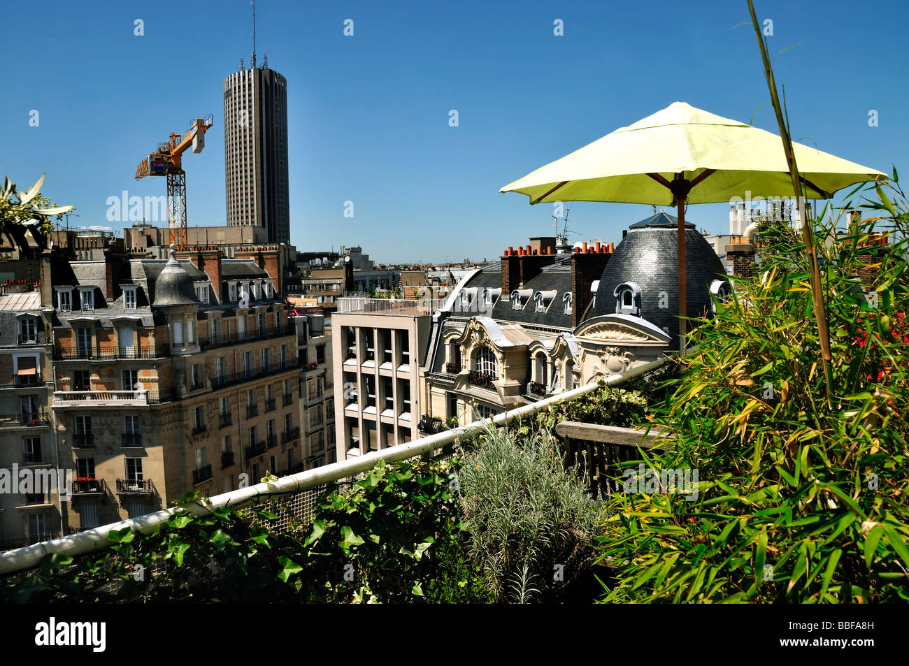 Paris France, Aerial View from Private Apartment, Balcony Garden urban  terrace - Stock Image