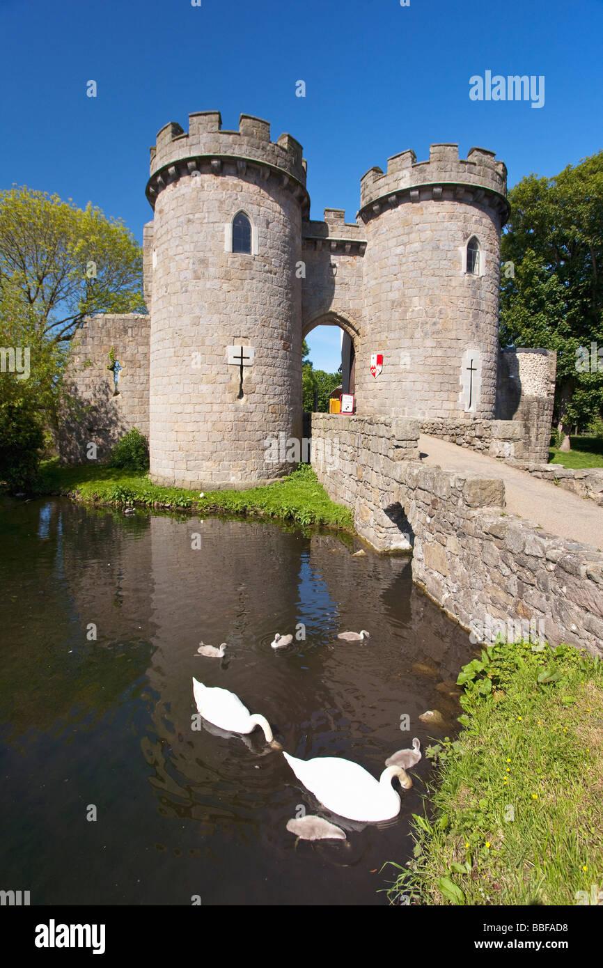 Whittington Castle moat with family of swans near Oswestry Shropshire England UK United Kingdom GB Great Britain - Stock Image