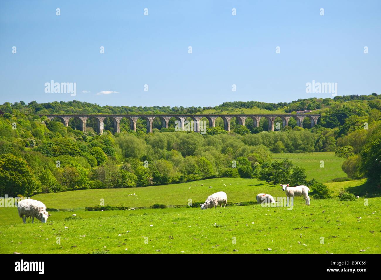 Railway viaduct Chirk which was erected in 1846-8 North Wales Cymru UK United Kingdom GB Great Britain British Isles - Stock Image