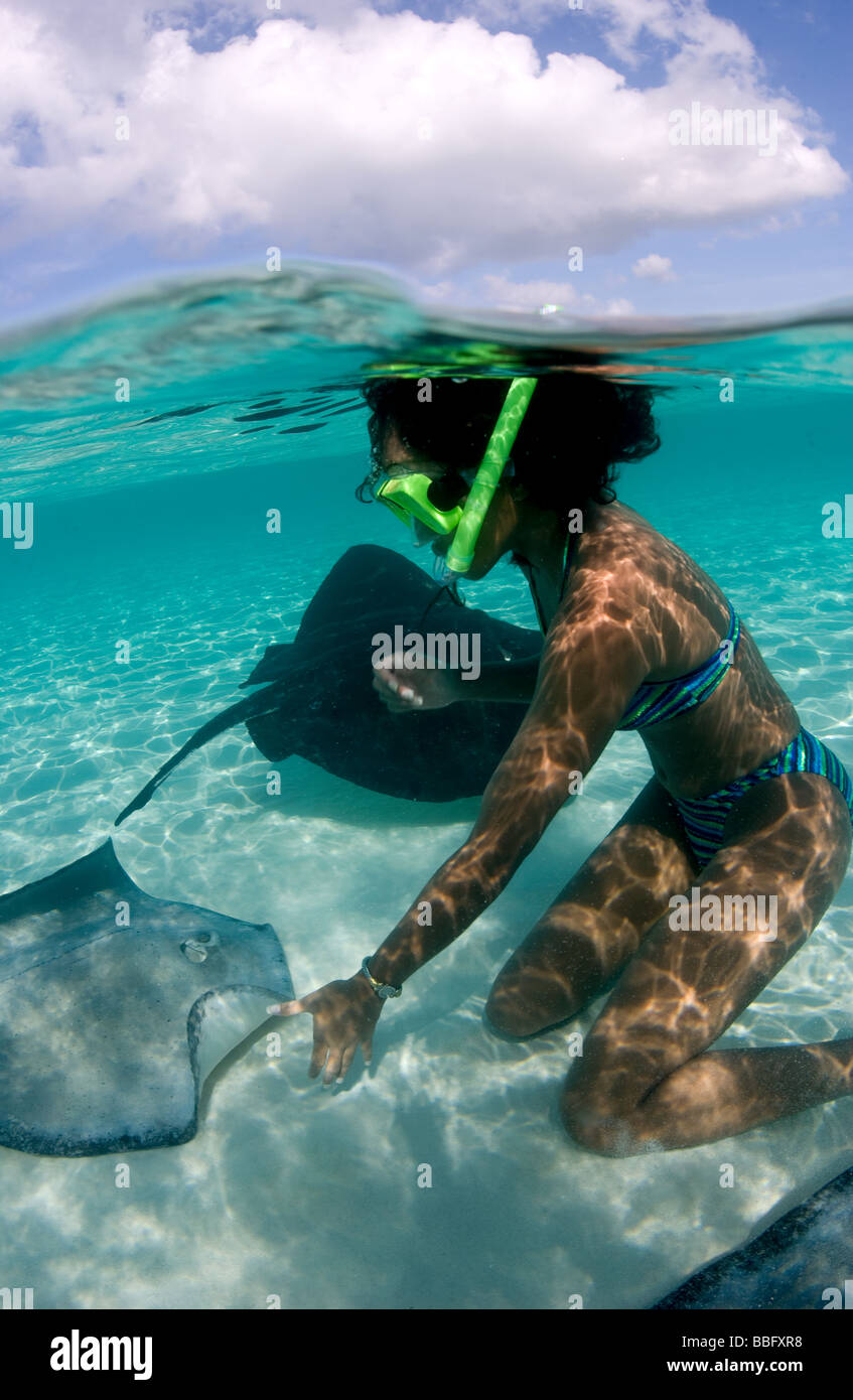 Playing with stingrays. - Stock Image