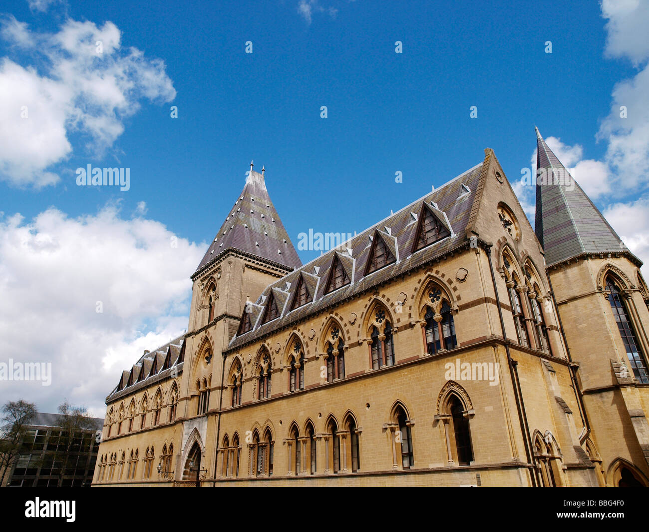 Oxford University Natural History Museum and Pitt Rivers Museum Parks Road Oxford Oxfordshire England - Stock Image