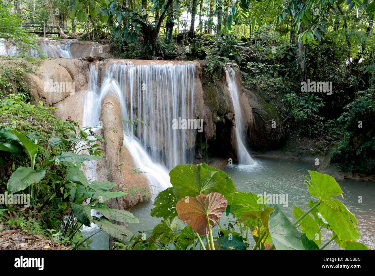 Waterfalls of Agua Azul in Palenque, Chiapas, Mexico, Central America - Stock Image
