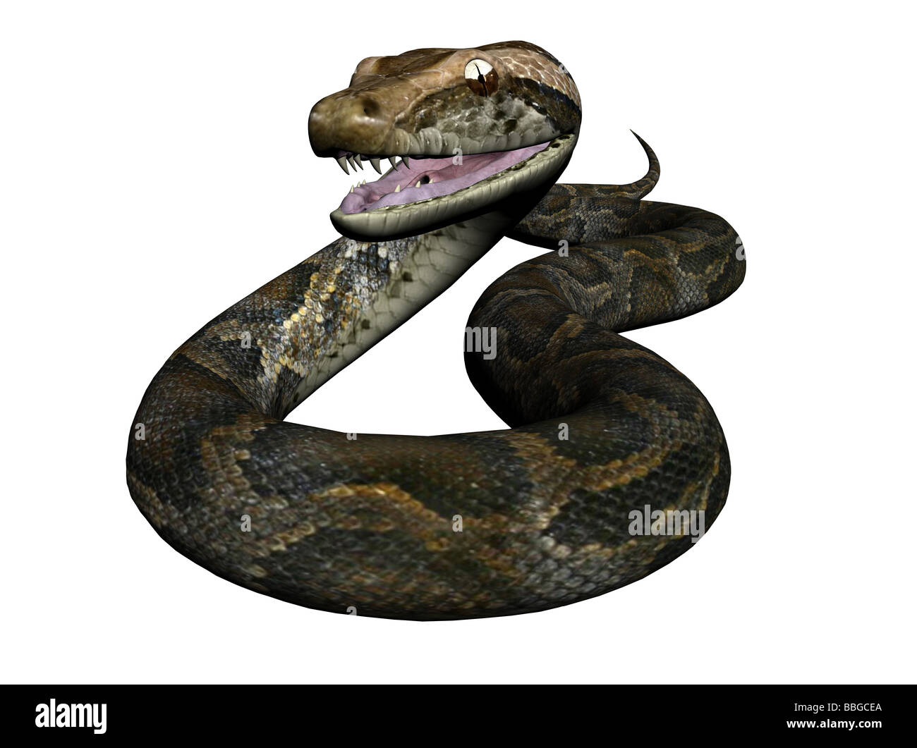 3D Illustration of a python - Stock Image