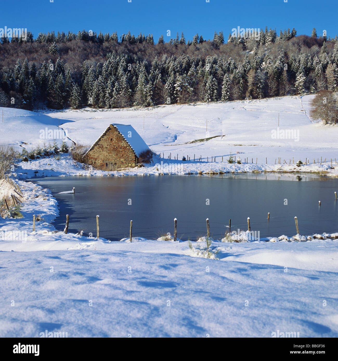 Winter scene - Old barn at the edge of a pond / lake in winter landscape - Stock Image