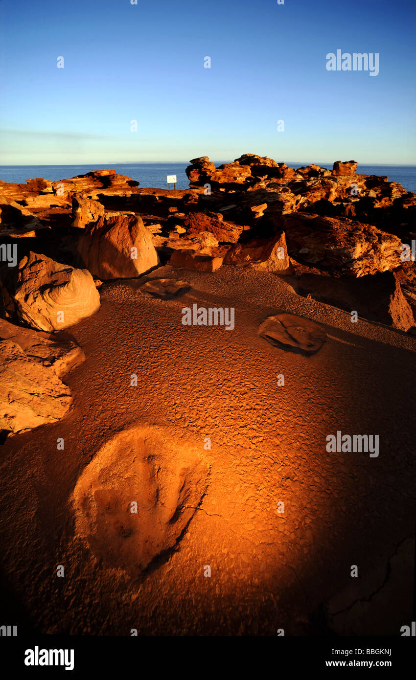 A copy of dinosaur footprints on display in Broome, Western Australia. The original is  visble at low tide in the - Stock Image