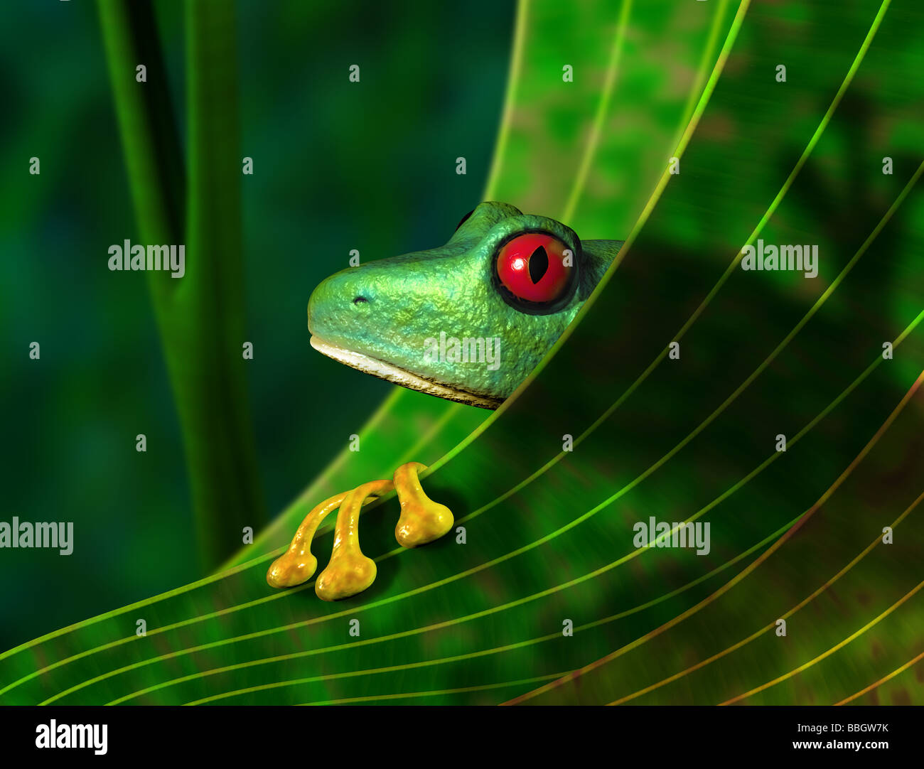 Illustration of an endangered red eyed tree frog peering from behind a leaf in the rainforest - Stock Image