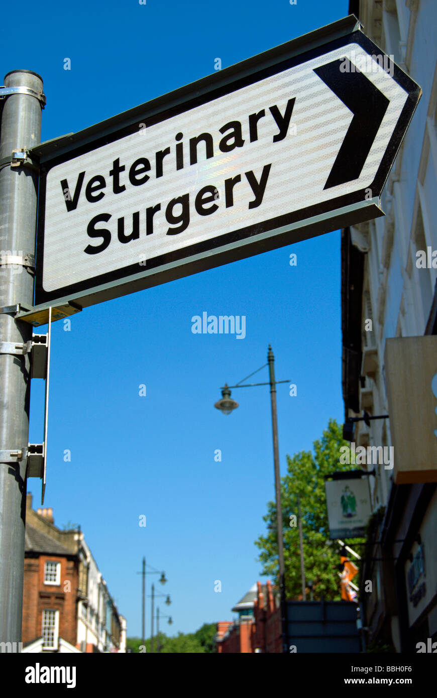 british street sign with right pointing arrow for veterinary surgery - Stock Image
