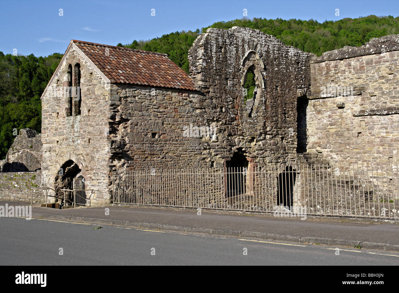Tintern Abbey, in the Wye Valley Monmouthshire Wales - Stock Image