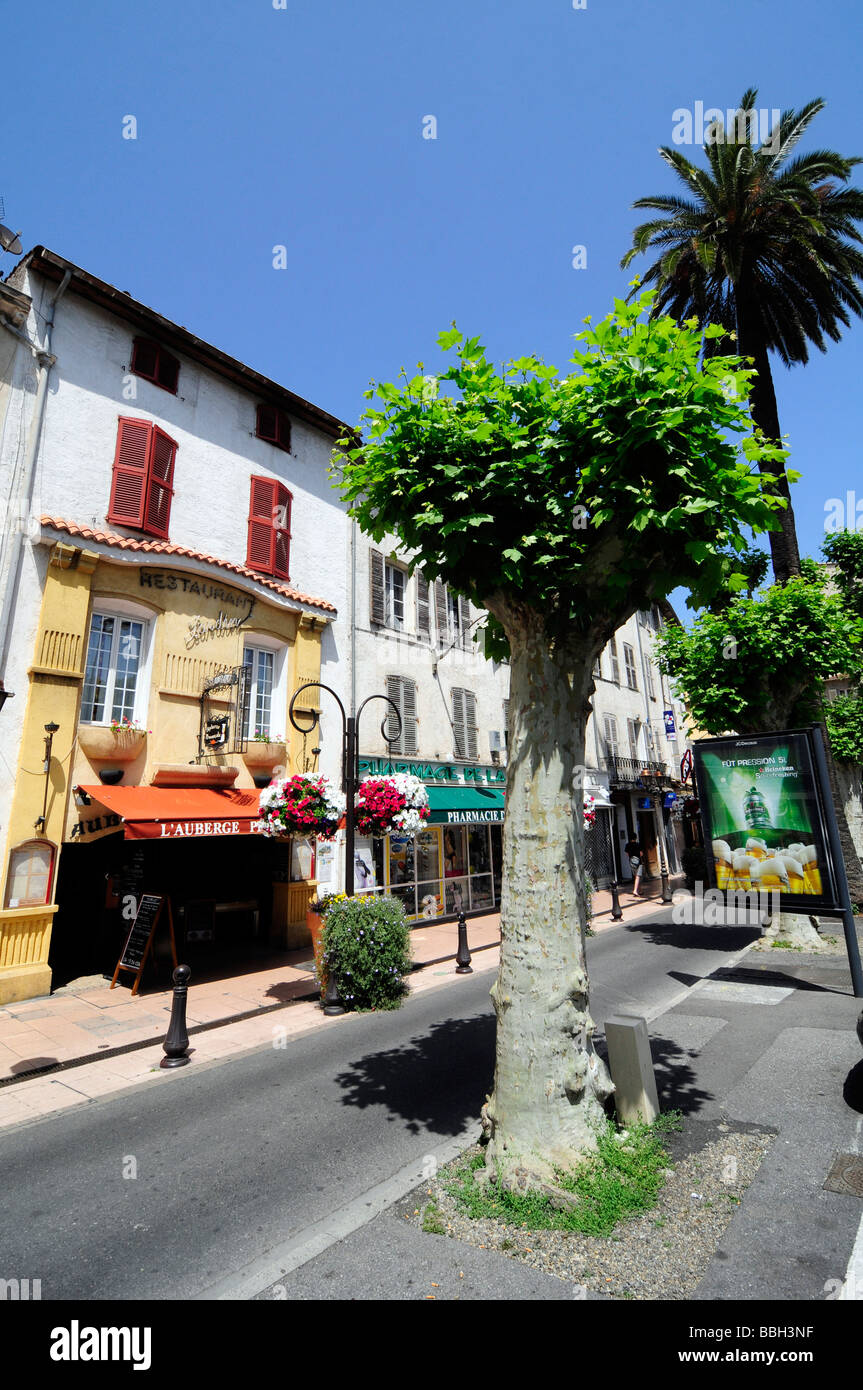 SEX AGENCY in Antibes