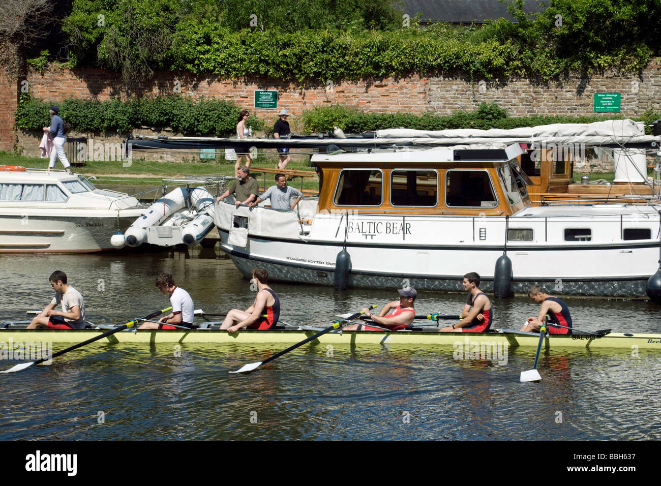 A rowing eight crew on the river Thames at  Wallingford, Oxfordshire, UK - Stock Image