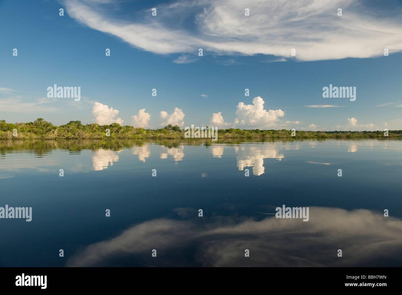 Rio Negro reflection, Amazon region near Manaus, Brazil - Stock Image