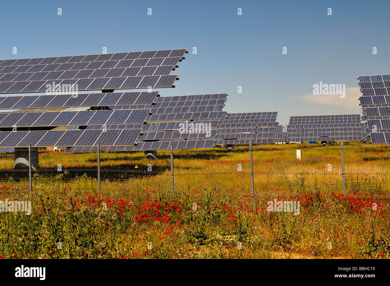 Field with red poppies and many arrays of solar panels for electricity production Near Antequera Spain - Stock Image