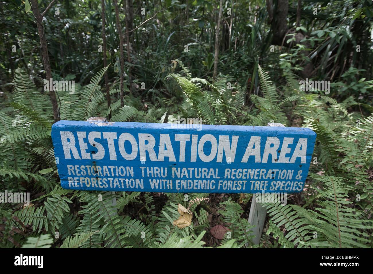 Forest regeneration in Puerto Princesa Subterranean River National Park Nr Sabang on Palawan Philippines - Stock Image