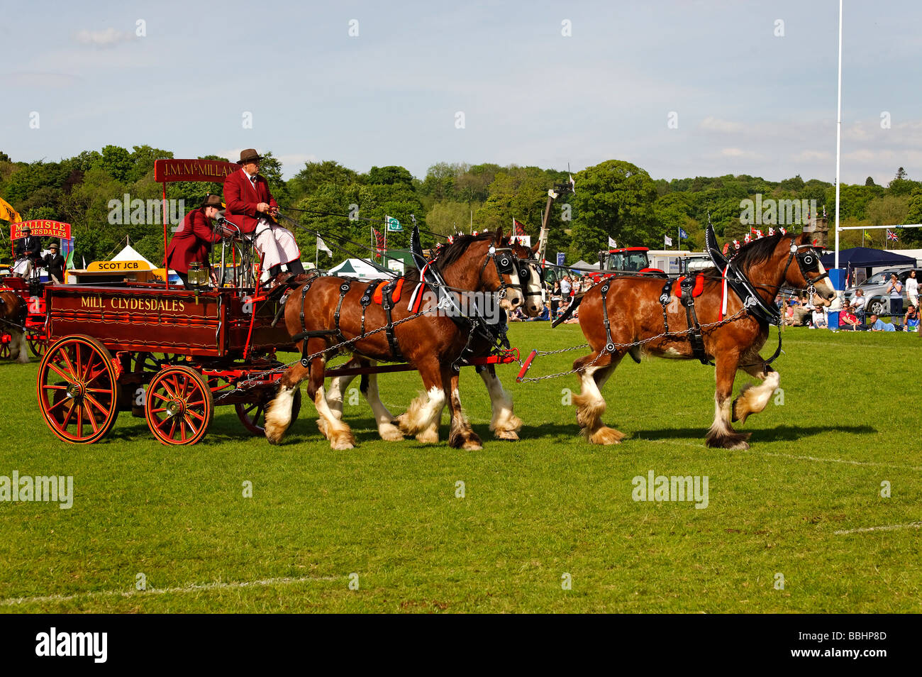 Clydesdale Heavy Horses at Northumberland County Show - Stock Image