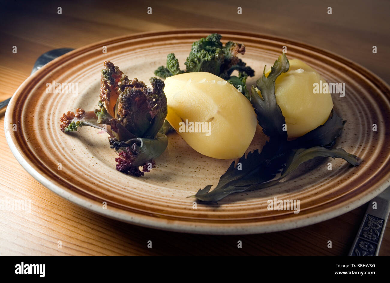 Wild organic food Simple hearty dish containing of wild Sea Kale and boiled potato garnished and flavoured with - Stock Image