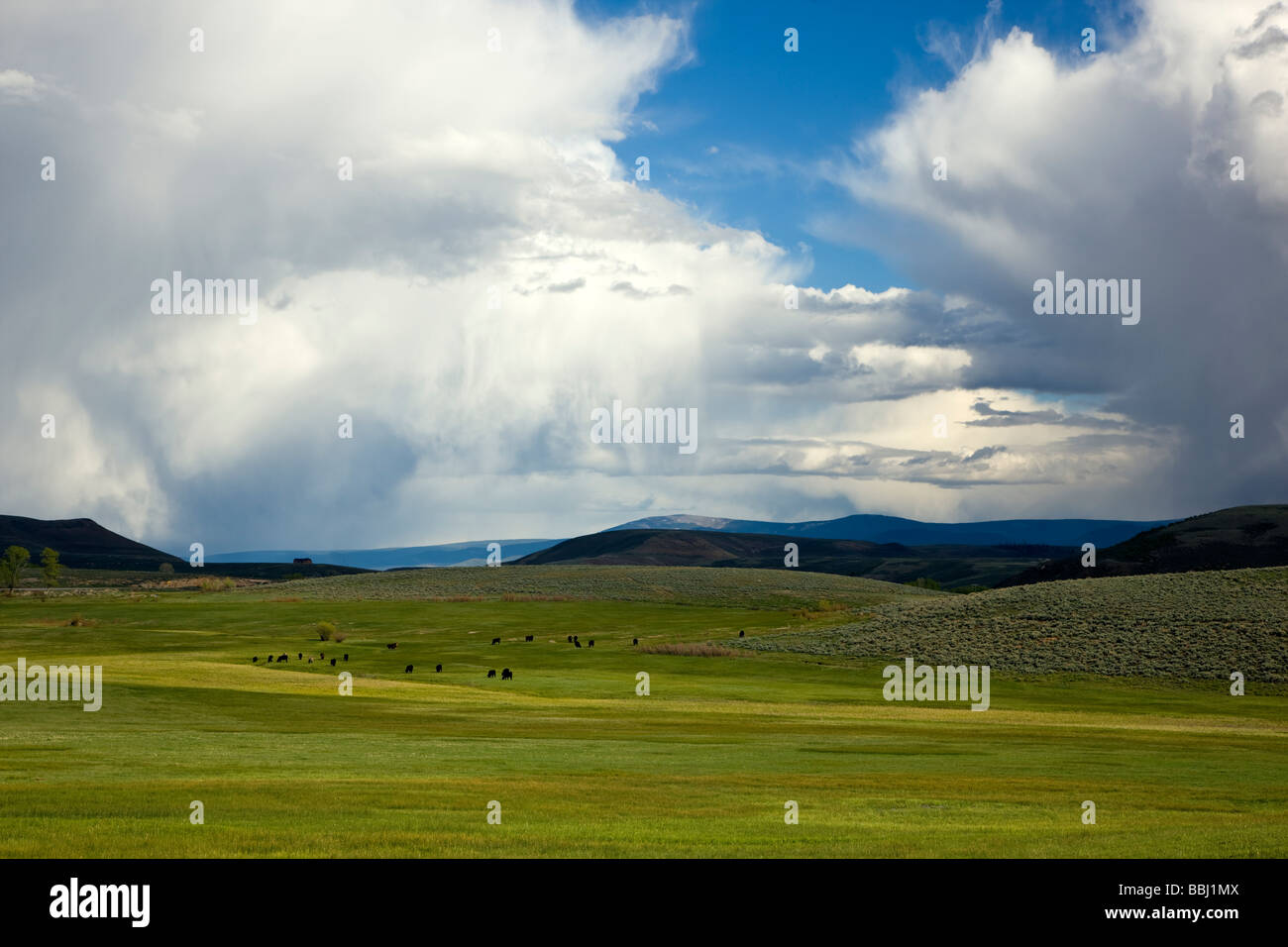 Springtime view southeast of ranchland towards the Sawatch Range of mountains and clearing stormy skies taken from - Stock Image