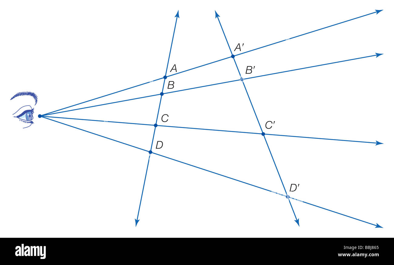 Although distances and ratios of distances are not, the cross ratio, defined as AC/BC · BD/AD, is  preserved - Stock Image
