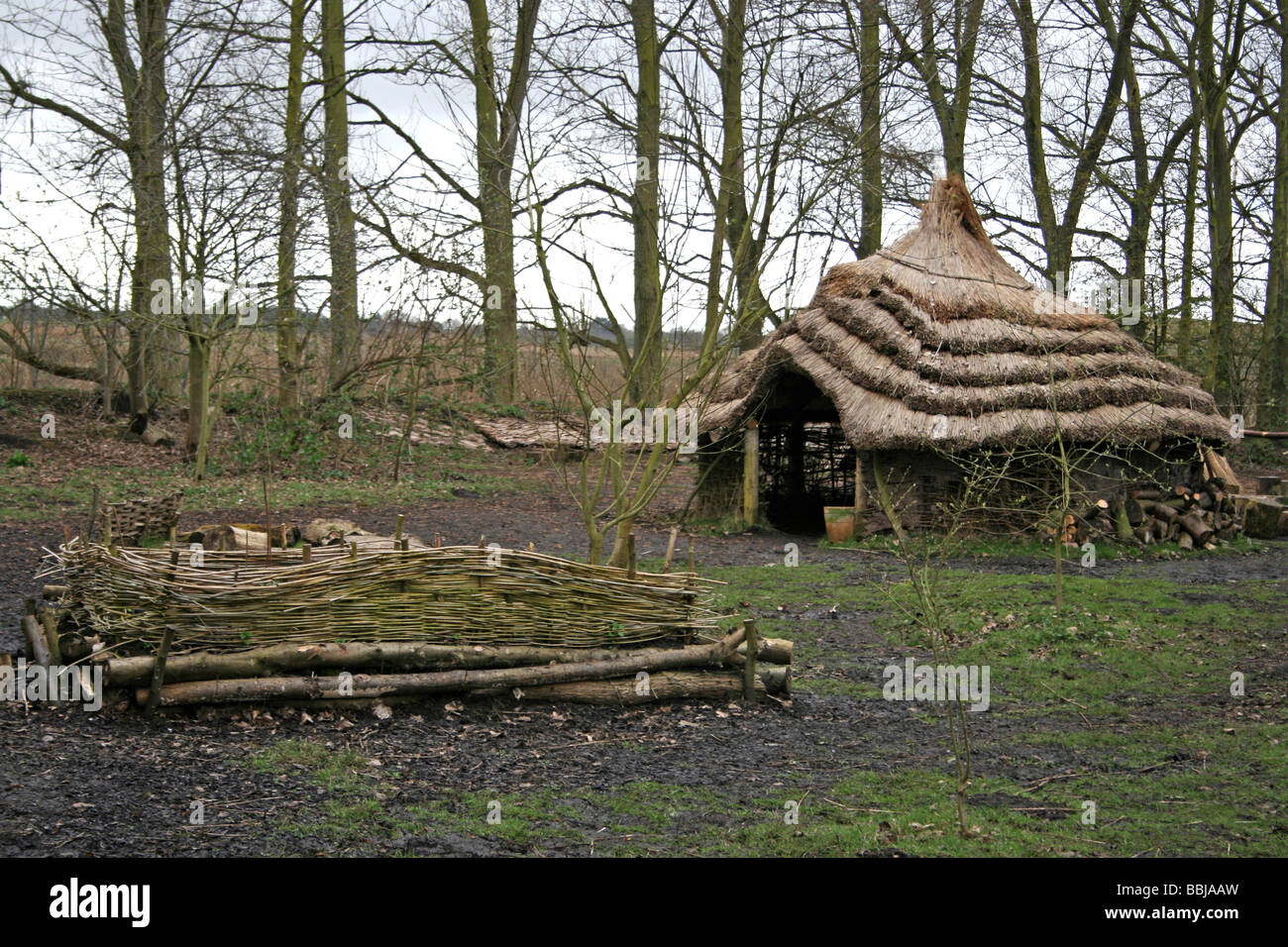 Mere Tun: A Roundhouse Village Reconstruction At Martin Mere WWT, Lancashire, UK - Stock Image