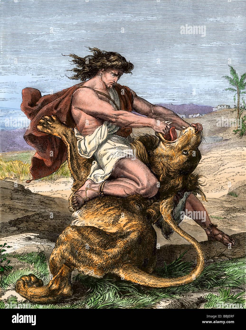 Самсон и лев картинка