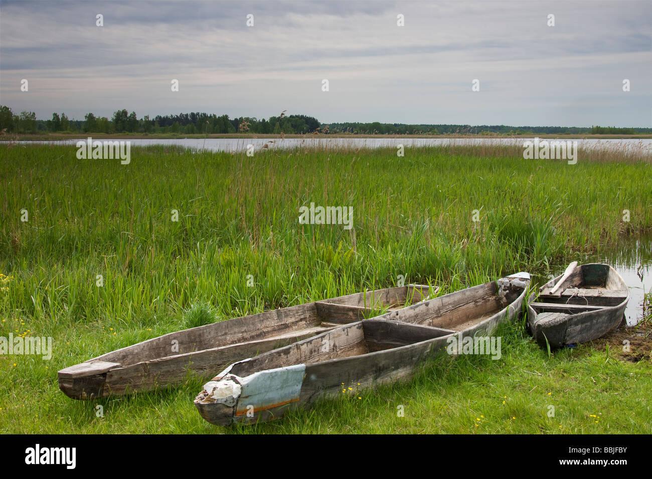 Flat-bottomed canoes (punts) on shore of lake. - Stock Image