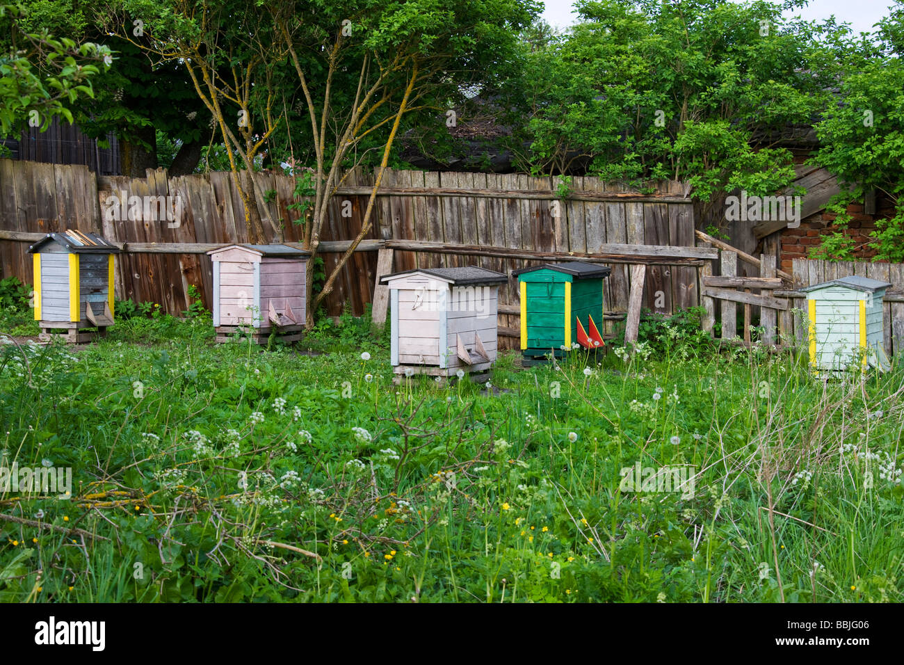 Collection of Bee-hives on area of rough ground outside of the town. - Stock Image