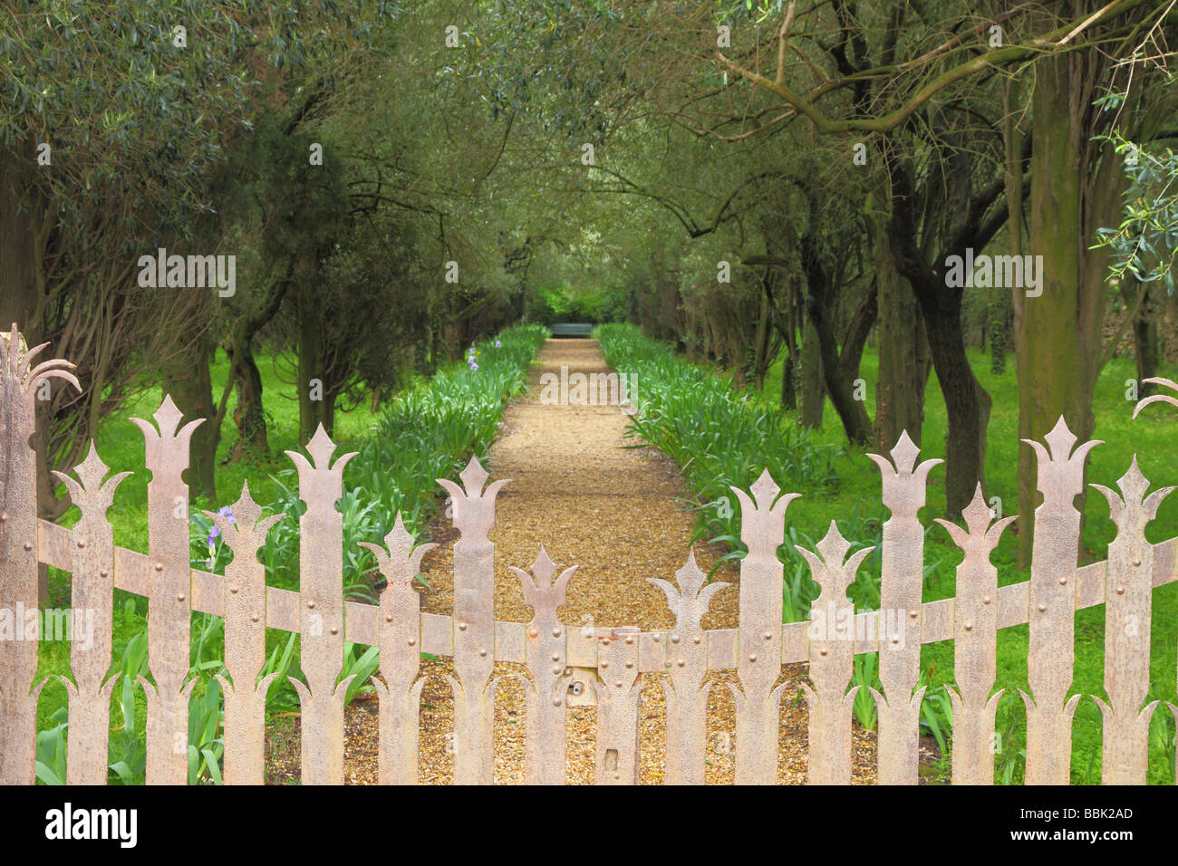 Orchard Fontfroide Benedictine Abbey Languedoc-Roussillon France - Stock Image