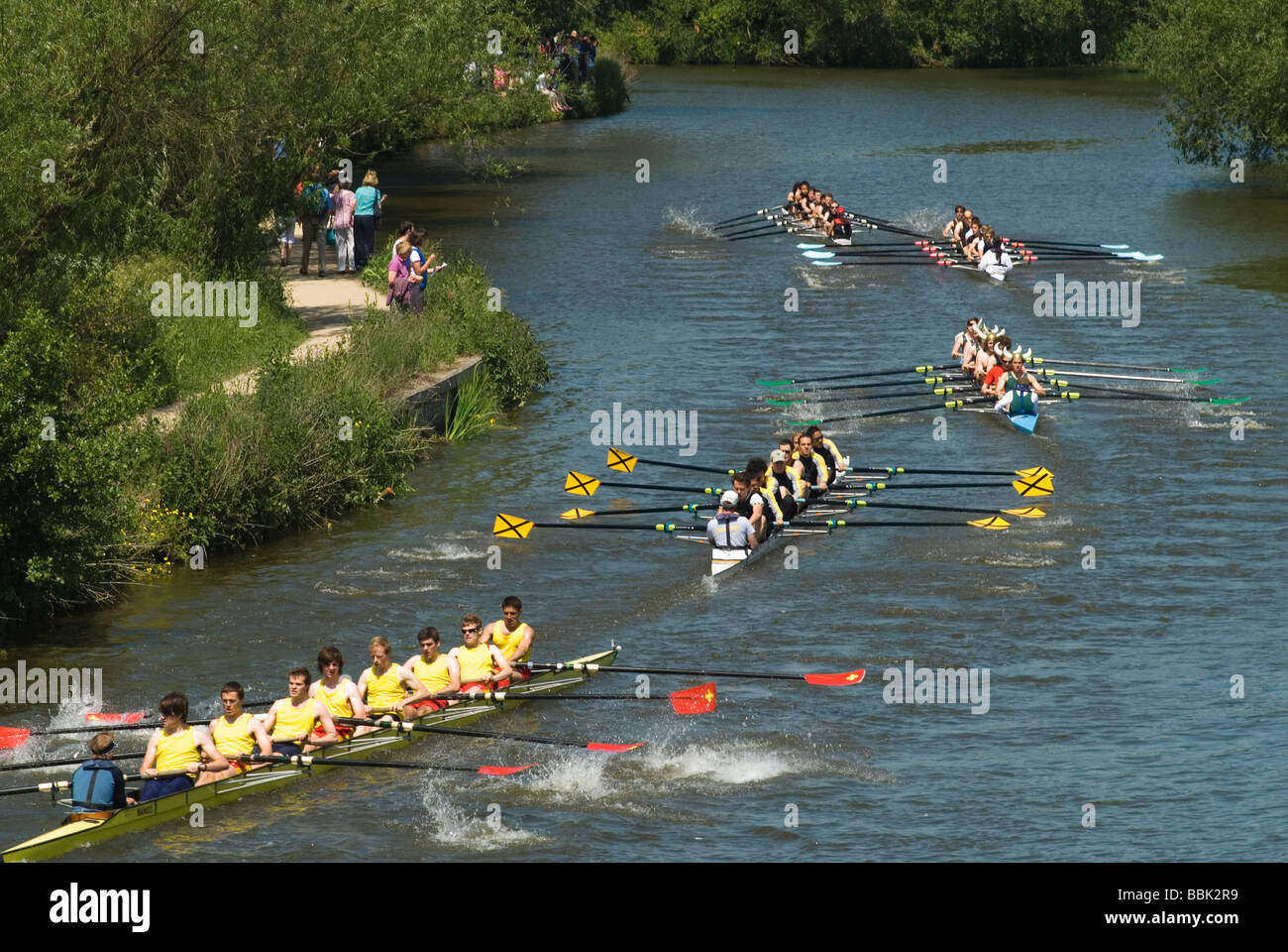 Oxford University Rowing Clubs Eights Week Rowing races on the River Isis actually River Thames in Oxford Oxfordshire - Stock Image