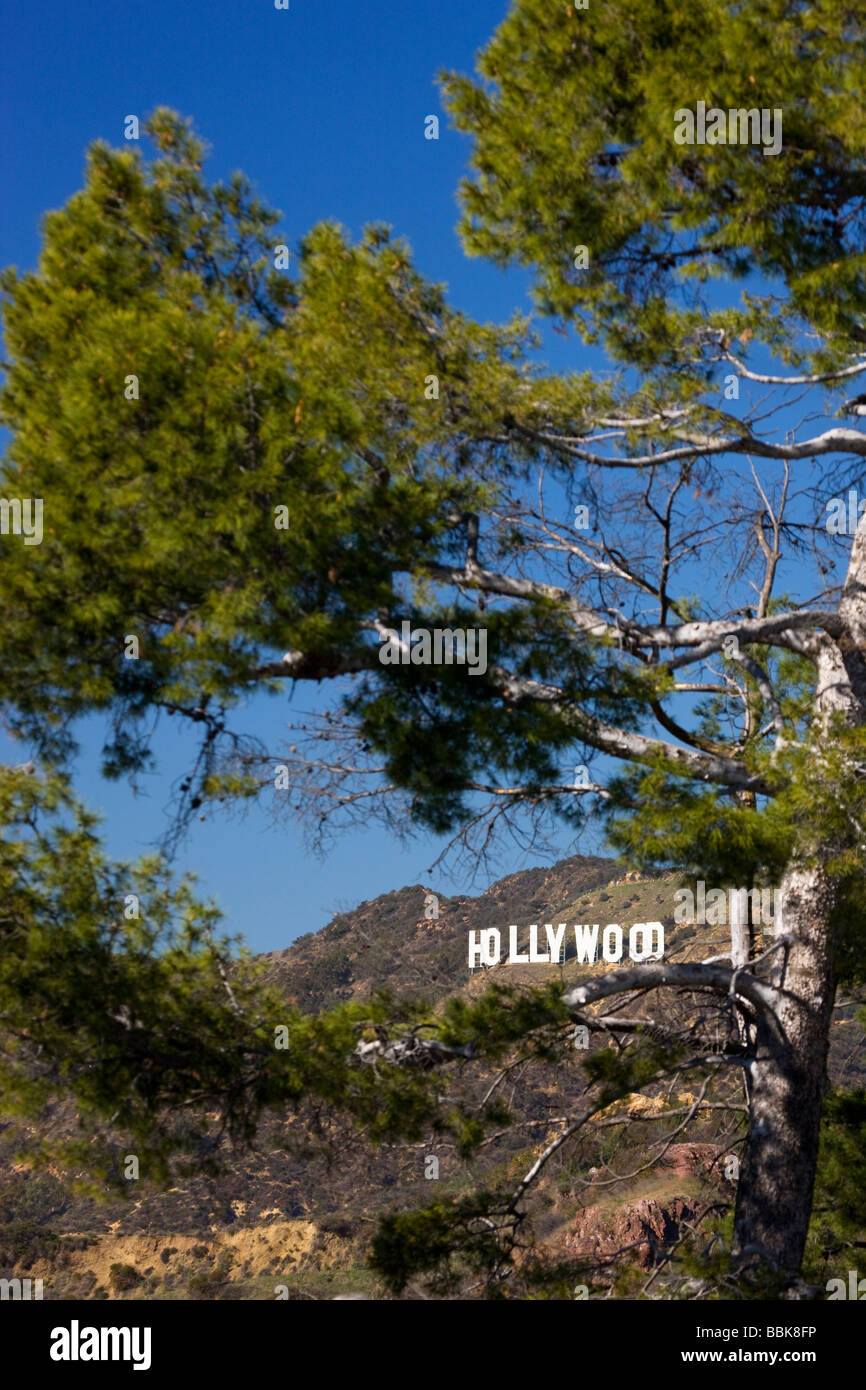 The Hollywood sign from Griffith Observatory Los Angeles California - Stock Image