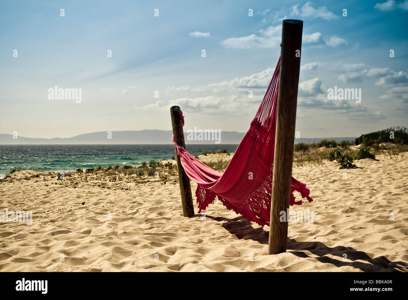 A hammock on a beach - Stock Image