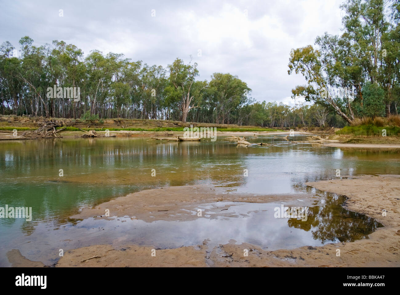 Low water levels in Australia's Murray River - Stock Image