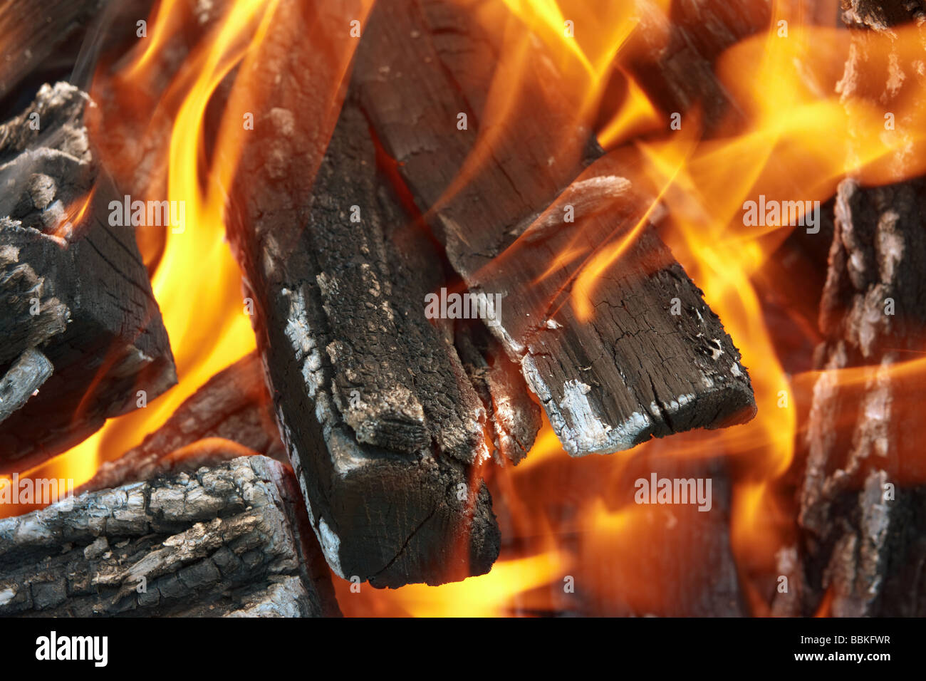 Campfire burning firewood with tongues of flame closeup - Stock Image