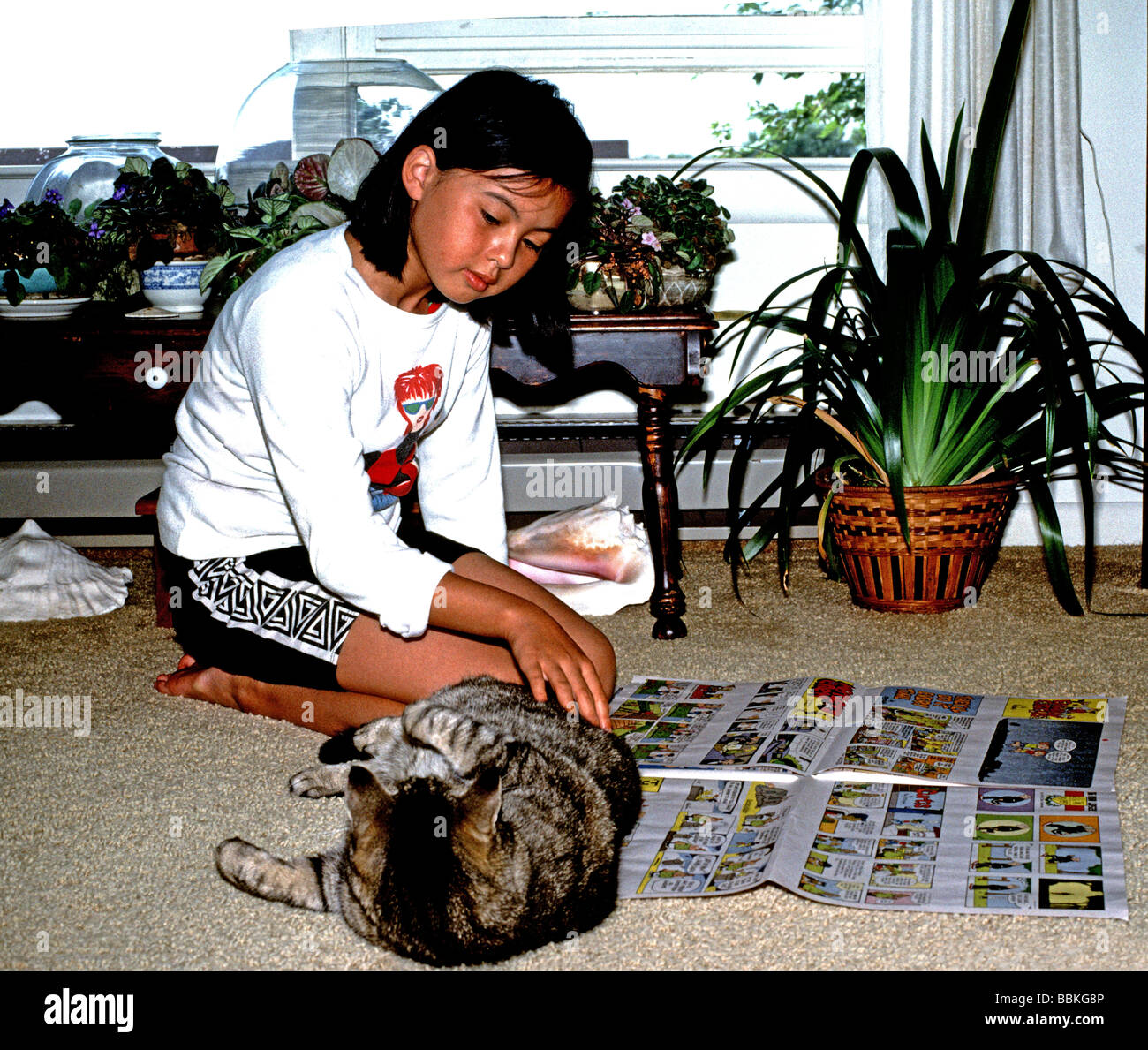 ten year old girl pets cat as she reads the Sunday comics - Stock Image