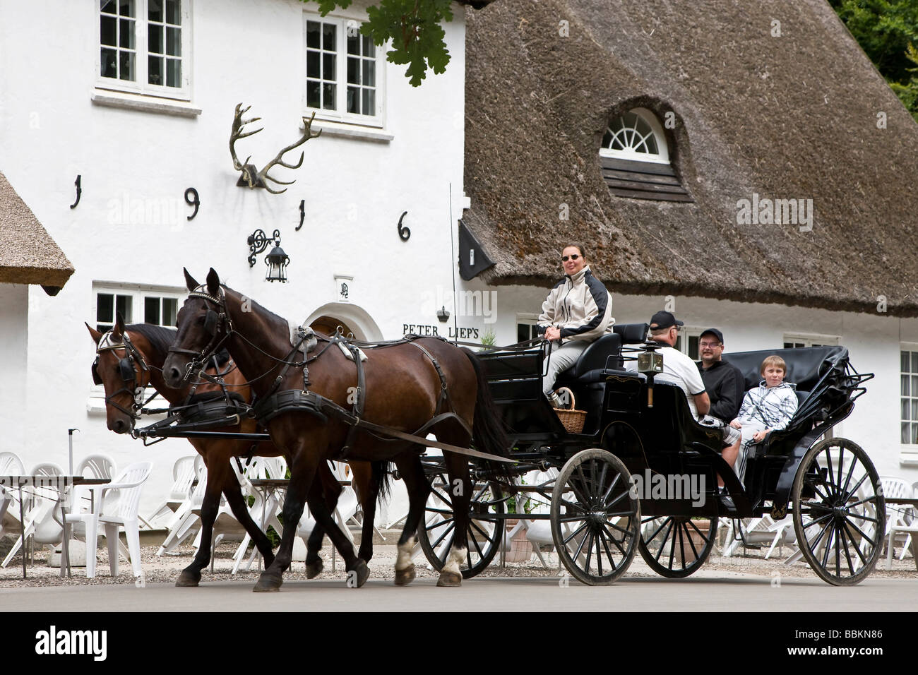 Sightseeing in a hackney carriage in the Danish park Dyrehave, Copenhagen, Denmark - Stock Image