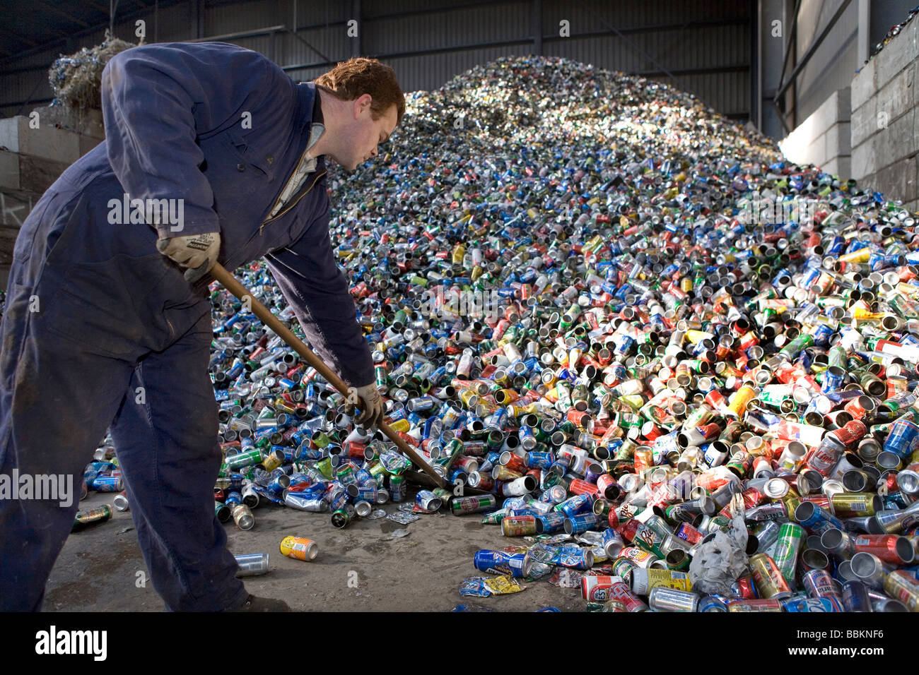 Recycling of tins Especially during the summer days when people drink lots of softdrinks the supply of tins is extremely - Stock Image