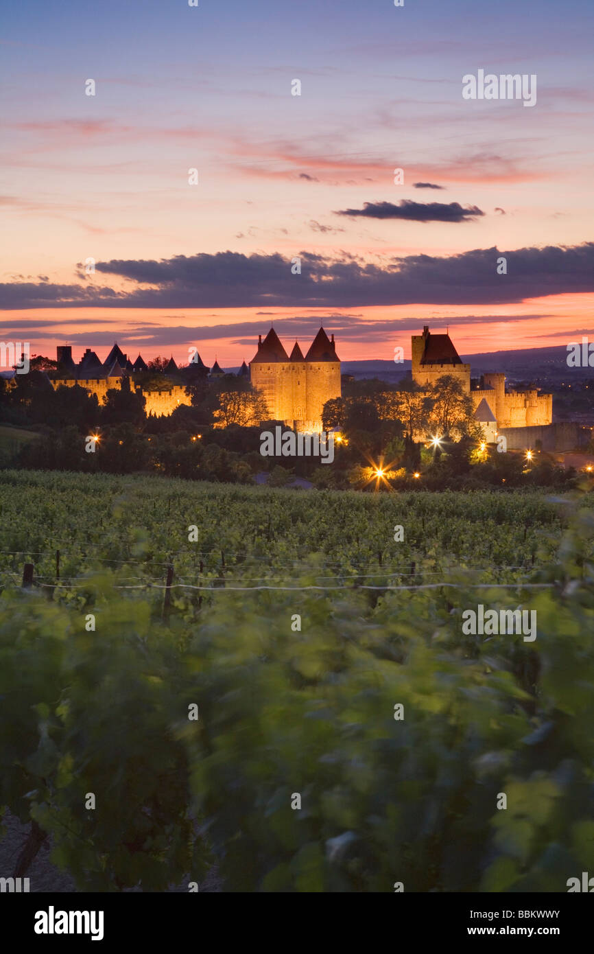 Carcassonne at dusk from vineyards outside the city. Languedoc Rousillon. France - Stock Image