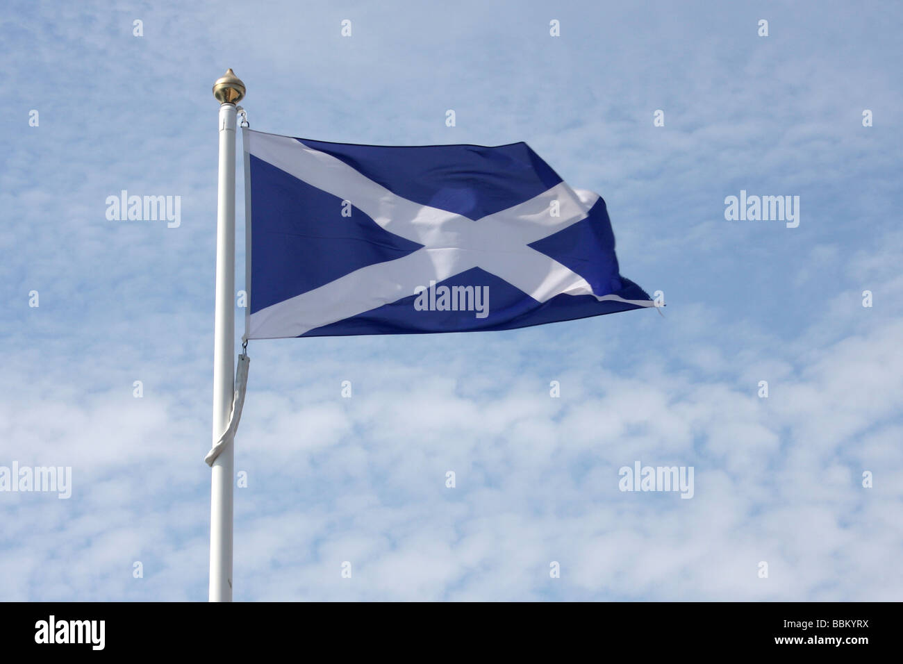 The Scottish national flag flying against a blue sky. - Stock Image