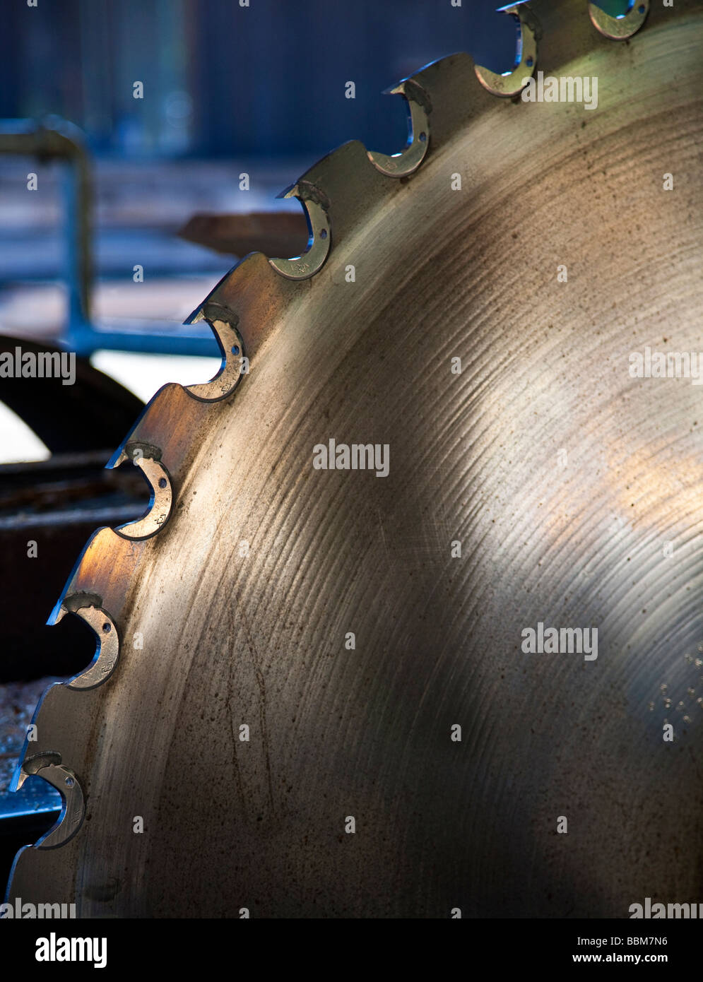 Saw blade in saw mill - Stock Image