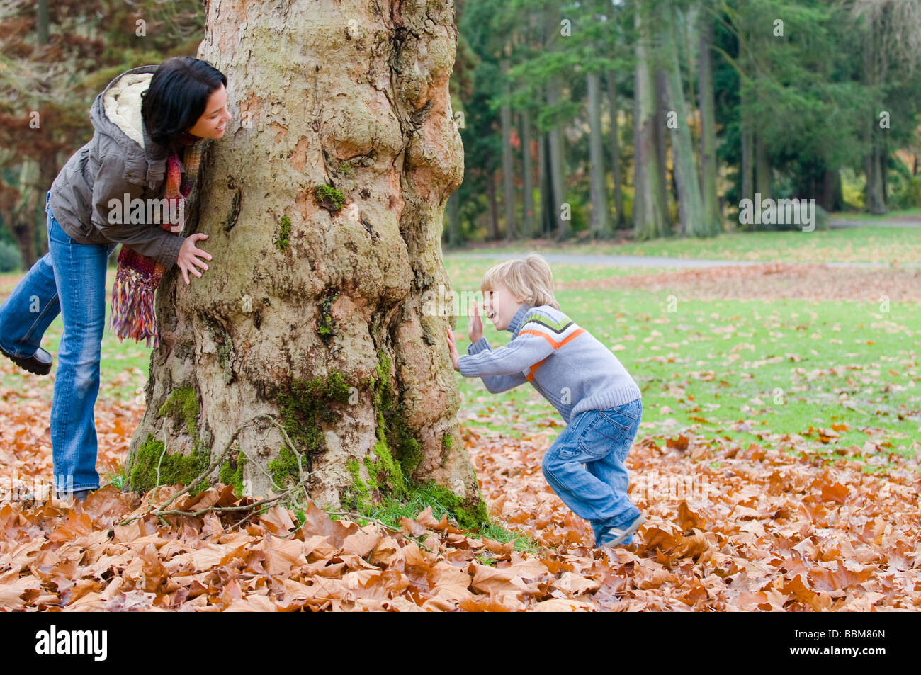 Young woman and young boy at opposite sides of large tree, Vancouver, British Columbia - Stock Image