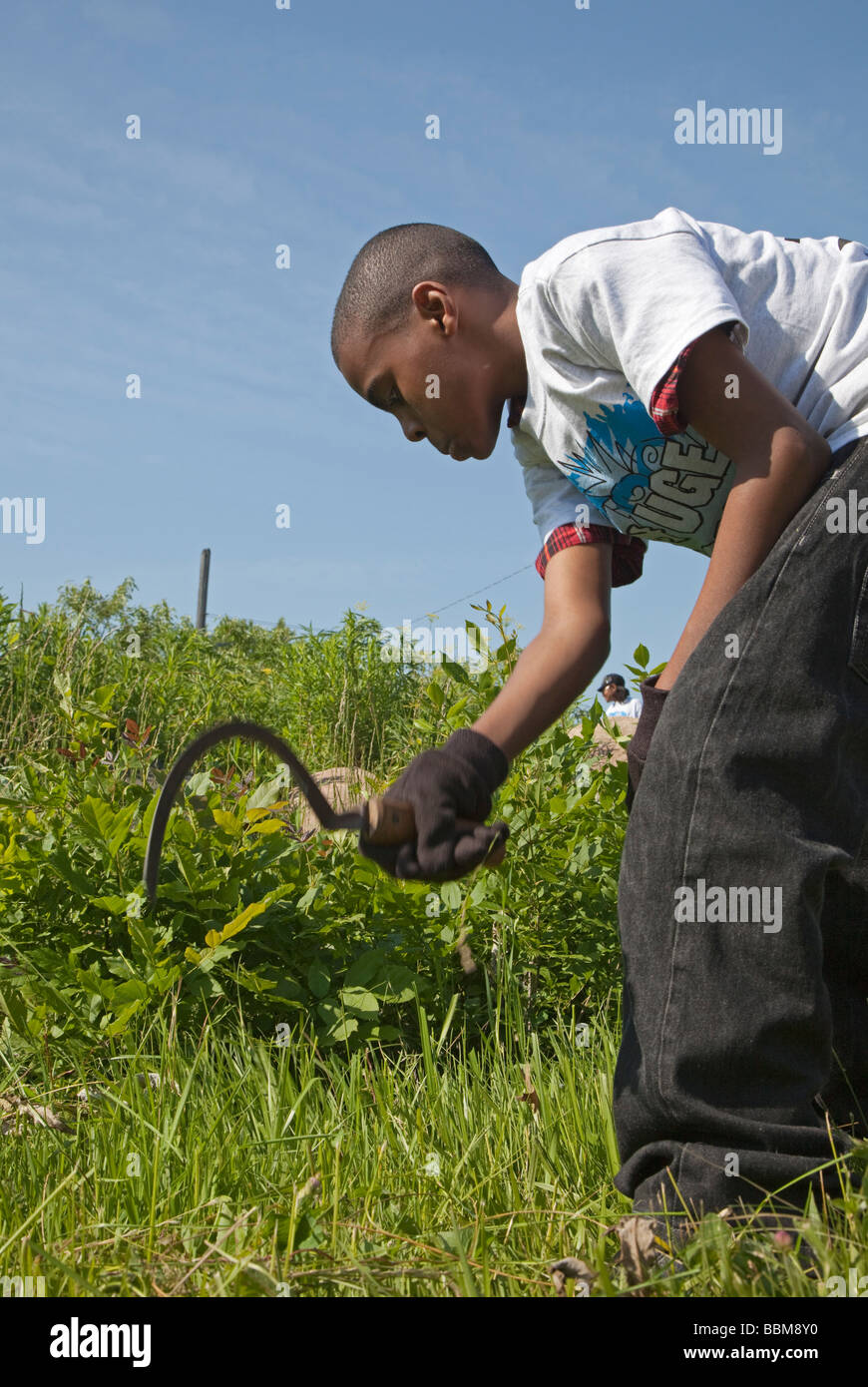 Boy cuts grass with a sickle - Stock Image