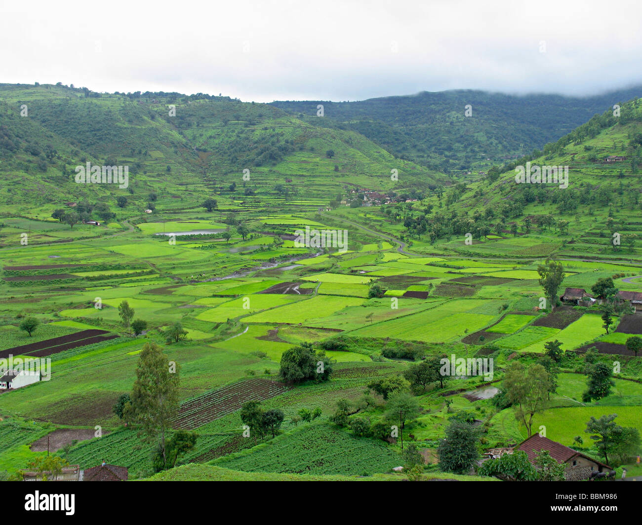 landscape, houses in the farm. village. - Stock Image