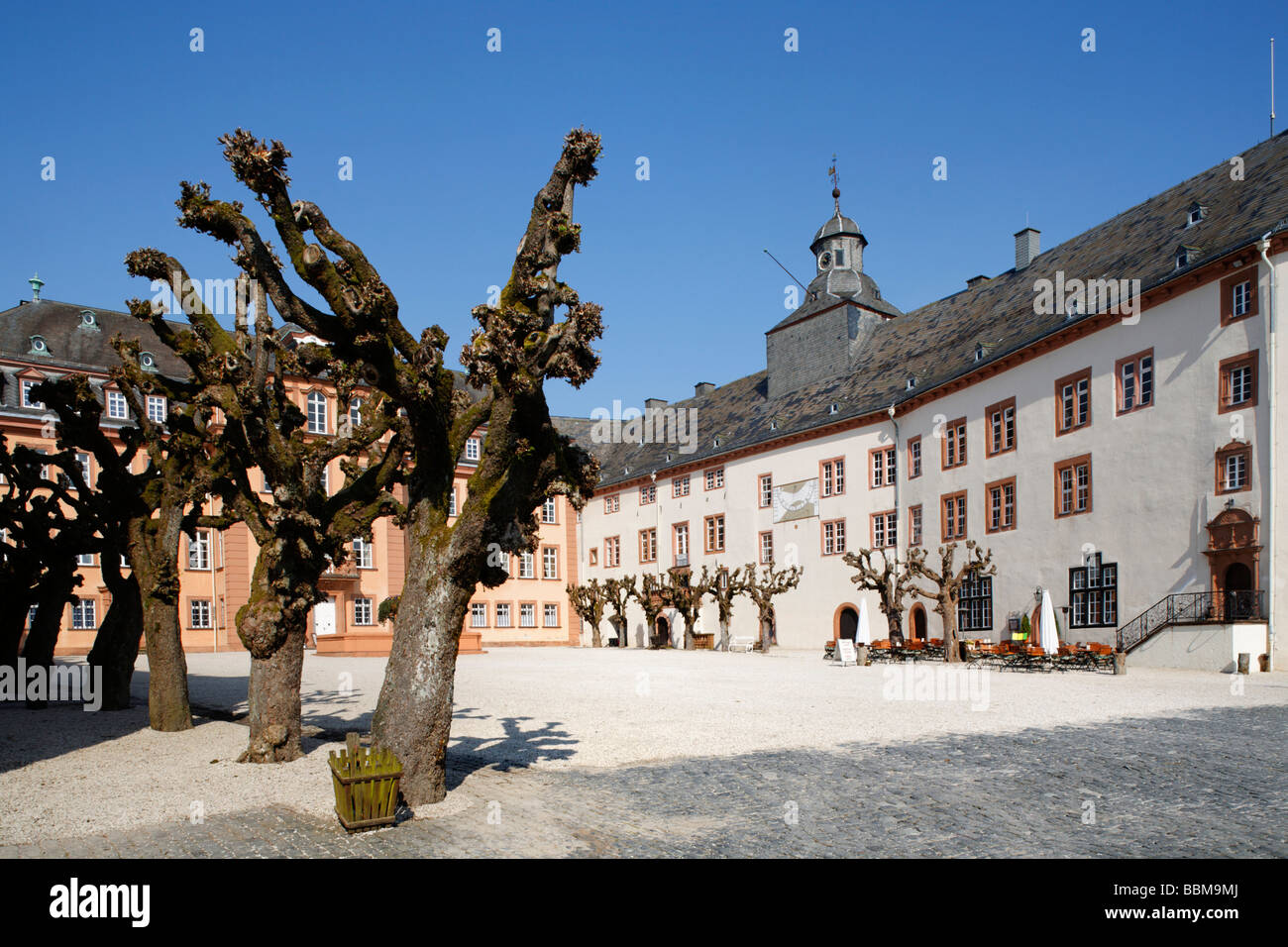 Castle square with cut willows and north wing, Berleburg Castle, Bad Berleburg, district of Siegen-Wittgenstein, - Stock Image